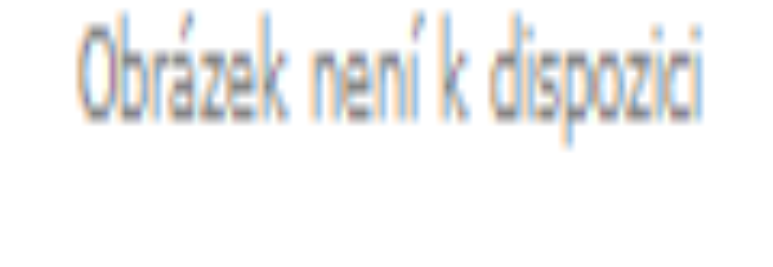 PROSPERPLAST Truhlík s miskou RATOLLA CASE bílý 58,7cm